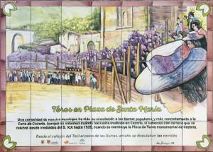 10 - Toros en Plaza de Santa Maria