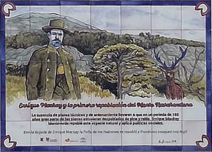 25 - Enrique Mackay y la primera repoblación del Monte Navahondona