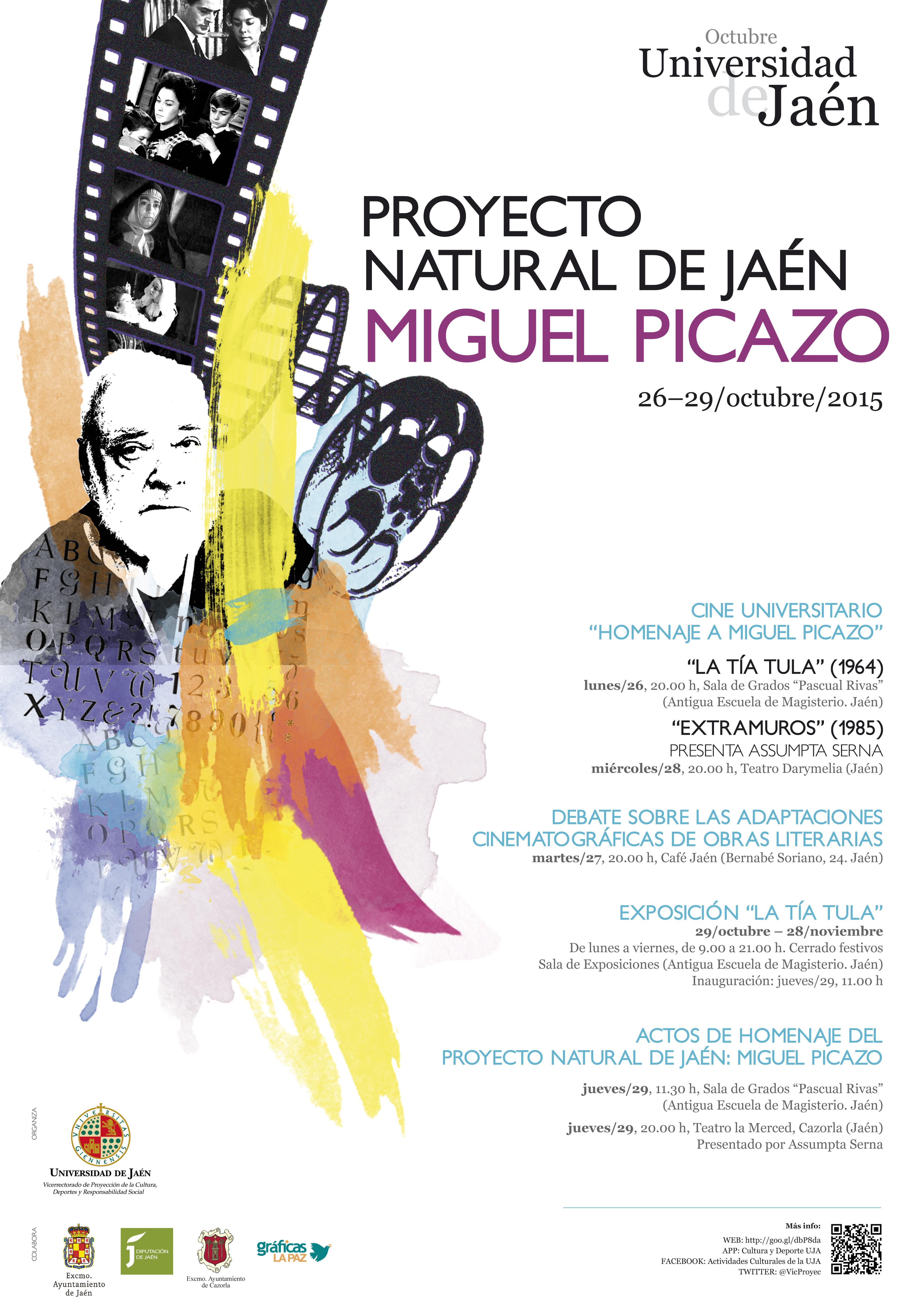 CARTEL_Picazo