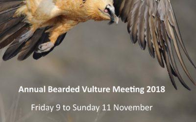 Cazorla acogerá el congreso internacional 'Annual Bearded Vulture Meeting' del 9 al 11 de noviembre
