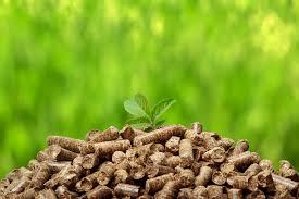 El Ayuntamiento de Cazorla reduce emisiones a la atmosfera y mejora la eficiencia energética en varias de sus instalaciones con la implantación de calderas de biomasa
