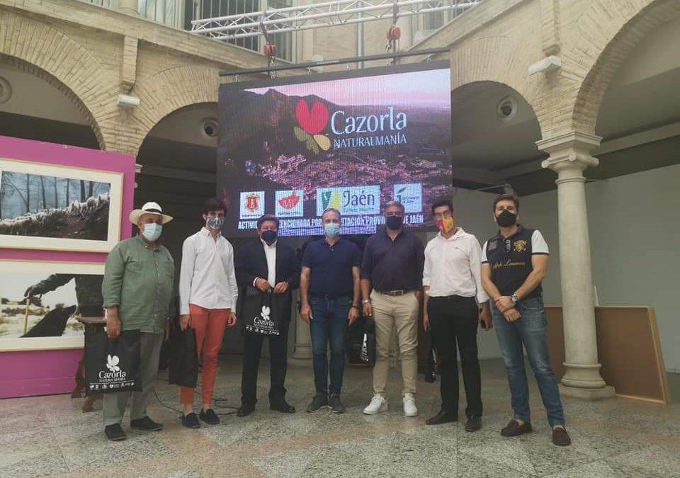 Cazorla acoge el II Circuito de Novilladas con Picadores de Andalucía
