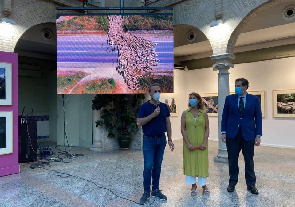 Cazorla acoge la exposición 'Trashumancia, ir y venir entre vereas' de Katy Gómez Catalina